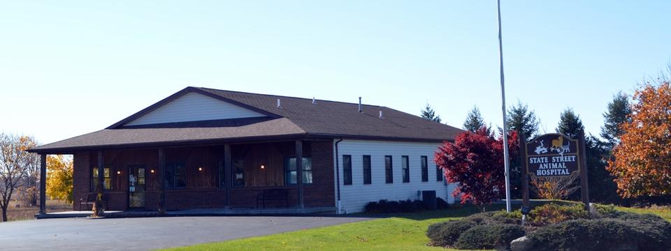 State Street Animal Hospital, PC